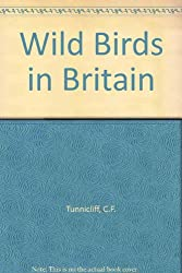 Wild Birds in Britain
