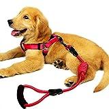 PLDDY Hundegeschirr Brust Zurück Hundeleine Geschirr explosionssicher Hundeleine Hundeleine Golden Retriever Leash Pet Vest (größe : L)