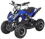 Actionbikes Motors Mini Elektro Kinder Racer 800 Watt ATV Pocket Quad Kinderquad Kinderfahrzeug… (Blau/Schwarz)