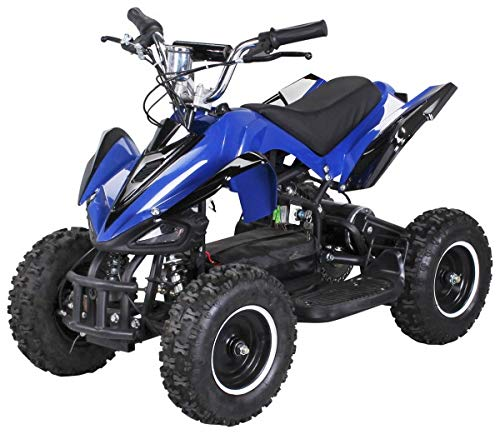 Actionbikes Motors Mini Elektro Kinder Racer 800 Watt ATV Pocket Quad Kinderquad Kinderfahrzeug… (Blau/Schwarz)