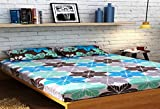 Raymond Home Double Bedsheet with 2 Pill...