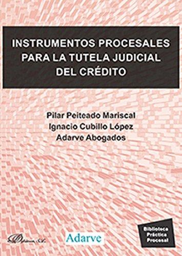 Instrumentos procesales para la tutela judicial del crédito por Ignacio,Peitado Mariscal, Pilar Cubillo López