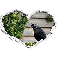 bello uccello nero a forma di cuore giardino prato nel formato sguardo, parete o adesivo porta 3D: 92x64.5cm, autoadesivi della parete, decalcomanie della parete, Wanddekoratio