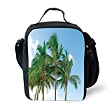 MLNHY School Supplies Tropical Decor,Palm Tree Tops in Sunny Sky Relaxing Exotic Idyllic Nature Serene Scenery Image,Green for Girls or Boys Washable