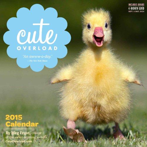 Cute Overload 2015 Calendar