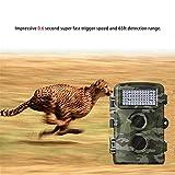 Fotocamera Da Caccia,12 Milioni Visore Notturno A Infrarossi Impermeabile HD Videocamera Di Sorveglianza Macchina Fotografica Di Scouting Fauna Selvatica