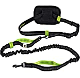 Hundefreund Guinzaglio da Jogging per Cani di Piccola Taglia Fino a 15 kg | Elastico Estensibile da 110 a 160 cm | Guinzaglio per Correre, Corsa