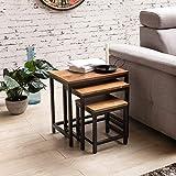 FineBuy 3er Set Design Beistelltisch Okala Sheesham Satztisch Metallbeine | Tischset 3 teilig Materialmix | Couchtisch aus Massivholz