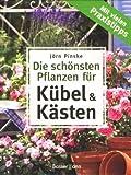 Die schönsten Pflanzen für Kübel und Kästen - Mit vielen Praxistipps [Illustrierte Ausgabe]