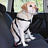 Trixie Auto-Sicherheitsgeschirr - M