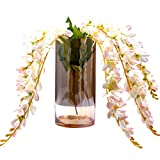 Home Essentials Vases - Best Reviews Guide