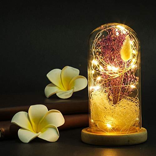 Rosa cupola in vetro, fiori di gipsofila, rosa rossa in seta e luce notturna a led fai da te, regalo romantico per san valentino, anniversario, compleanno