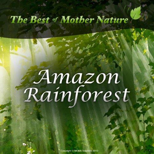 Best Shoes Rainforest