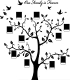 Schwarz Bilderrahmen Wandaufkleber Vögel Vinyl Baum Wandtattoos Wandsticker Kinderzimmer Geschenk