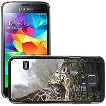 Print Motif Coque de protection Case Cover // M00243703 Dos jirafas Comer Pasto del zoológico // Samsung Galaxy S5 MINI SM-G800