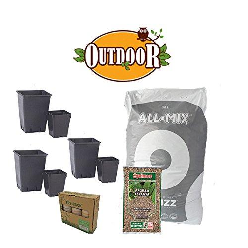Kit de culture 6 plantes bio – Outdoor + offert