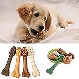 FEIDAjdzf Giocattolo per Animali Domestici, Cucciolo di Cane Pet Dentale a Forma di Osso nutrienti Grinding Stick Tooth Chew Toy–Colore Casuale