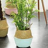 TAOtTAO Flower Basket Seegras-Weidenkorb-Weidenkorb-Blumen-Topf-faltender Korb-schmutziger Korb (Blau)