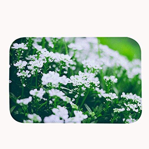Weiße Blumen Bereich Teppich (rioengnakg Super Saugfähig rutschfest natur weiß Blumen Badteppich Coral Fleece Bereich Teppich Fußmatte Eingang Teppich Fußmatten für Vorderseite Außen Türen, Korallenvlies, 16