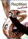 Reptilien hautnah (Wandkalender 2017 DIN A2 hoch): Die faszinierende Welt der urzeitlichen...