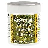 ARTEMISIA ANNUA intense 600 Kapseln 90 St Kapseln