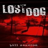 Lost Dog: A Skin Kadash Mystery