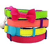 Blueberry Pet Pack of 1 Cat Collar, Classic Solid Adjustable Breakaway Small Cat Collar in Raspberry with Bell and Bow Tie, Neck 23cm-33cm