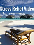 Stress Relief Video with Relaxing