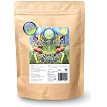 Nopal Cactus Prickly Pear Raw Ground Powder 250g by Ancient Purity