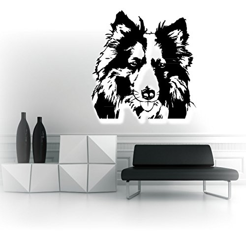 Collie Wandaufkleber Sticker Hunde Motive Hunderassen Wall Art Dekoration Dog Folienaufkleber   KB212V2W