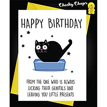 CAT Birthday Card Orange Envelope Amazoncouk Clothing