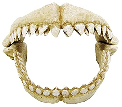CROCI Shark Teeth