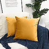 Housse de Coussin 45x45 cm,2pcs Doux en Velours Housses de Coussins Décoratif Taie d'oreiller pour Lit Voiture De La Maison Canapé (Jaune Moutarde)