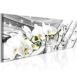 murando Bilder 135x45 cm - Vlies Leinwandbild - 1 Teilig - Kunstdruck - Modern - Wandbilder XXL - Wanddekoration - Design - Wand Bild - Orchidee Blumen Abstrakt b-B-0144-b-c
