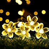 Fairy Lights Solar Powered 50 Flower LEDs Garden Patio Outdoor/Indoor String Lights 7M/23ft Waterproof Outside Decking Ambiance Lighting String Lamp for Wedding Summer Party Fence Terrace Xmas Rope Lights (Warm White)