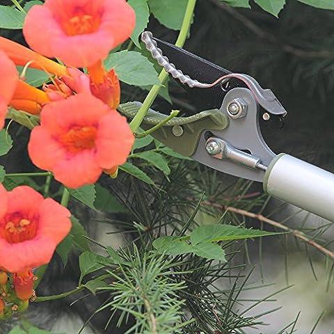 WORTH Sécateur Sécateur Cisaille longue portée Twig, manche long, débroussailleuse, pince à fruits Bordure Pick-up outil équipement - Morbido Grip Giardino Cesoie