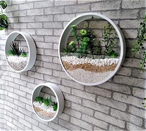 3 pacs Rund Metall Wand Blumentöpfe,Transparent Glas Pflanzgefäße Kunst Wandvase Von Blumen Bonsai Succulents Kräuter Farn Air Plant Töpfe Mit Creative Modern Wand-Dekor Für Office Home Haus Zimmer