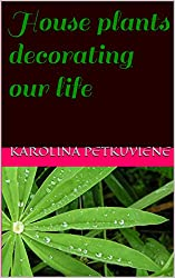 House plants decorating our life