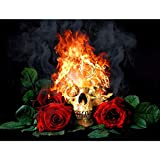 Leezeshaw 5d DIY complète perceuse Diamant Peinture par numéro Kits Fameless Strass Broderie peintures Photos pour décoration de Maison–Flamme Tête de Mort 40x30cm Flame Skull