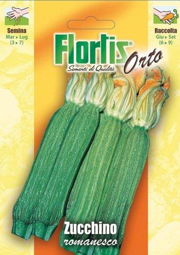 Flortis 4355385 Zucchini Romanesco (Zucchinisamen)