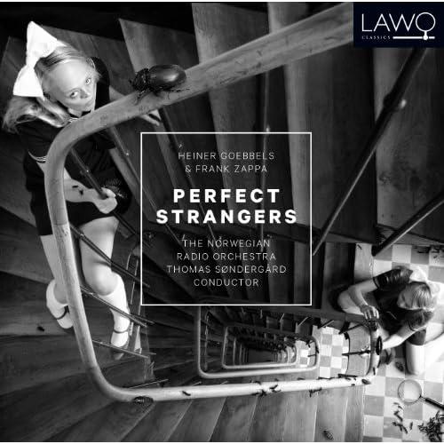 The Perfect Stranger (feat. Thomas Søndergård)