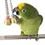 Sotoboo campane catena Boredom Breakers uccello Chew giocattolo per pappagallo ara africano grigio Budgie Parakeet Cockatiels Conure Lovebird Cockatoo gabbia giocattolo