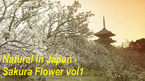 Natural in Japan - Sakura Flower vol1: Discovery natural in Japan (English Edition) Sakura Natural
