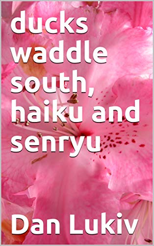 ducks waddle south, haiku and senryu (English Edition)