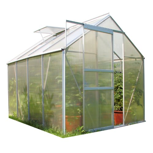 Zelsius Aluminium Gewächshaus für den Garten | inklusive Fundament | 250 x 190 cm | 4 mm Platten |...