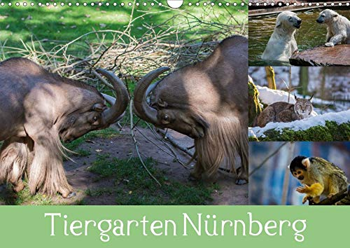 Tiergarten Nürnberg (Wandkalender 2020 DIN A3 quer): Meine schönsten Tierbilder aus Nürnberg. (Monatskalender, 14 Seiten ) (CALVENDO Tiere)
