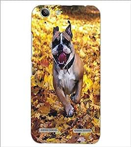 PrintDhaba Dog D-5371 Back Case Cover for LENOVO VIBE K5 PLUS (Multi-Coloured)