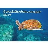 Schildkrötenzauber · DIN A4 · Premium Kalender 2019 · Schildkröte · Amphibien · Reptilien · Regenwald · Schildkröten · Meer · Schlangen · Set 1 Grußkarte & 1 Weihnachtskarte · Edition Seelenzauber