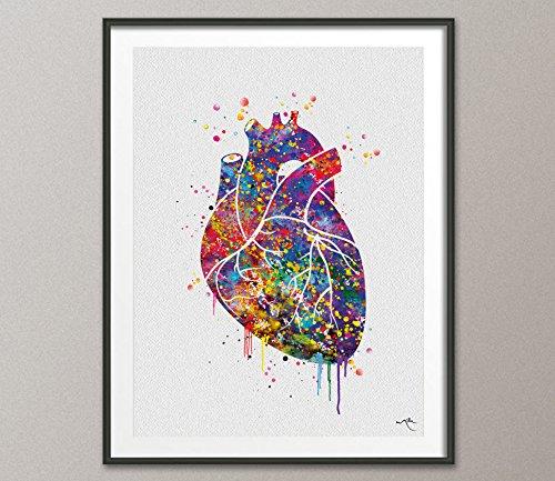 Herz Anatomie Watercolor Kunstdruck lovewins Hochzeit Geschenk Wand Decor Gay Pride Art Home Decor Wand aufhängen geekery Nerd Wand aufhängen [keine 77], Mittel, 11.70 x 16.55