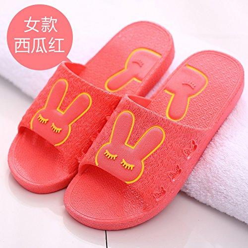DogHaccd pantofole,Il bagno pantofole donne indoor estate home soggiorno con una morbida antiscivolo bagno in plastica coppie maschio cartoon cool pantofole Il rosso1